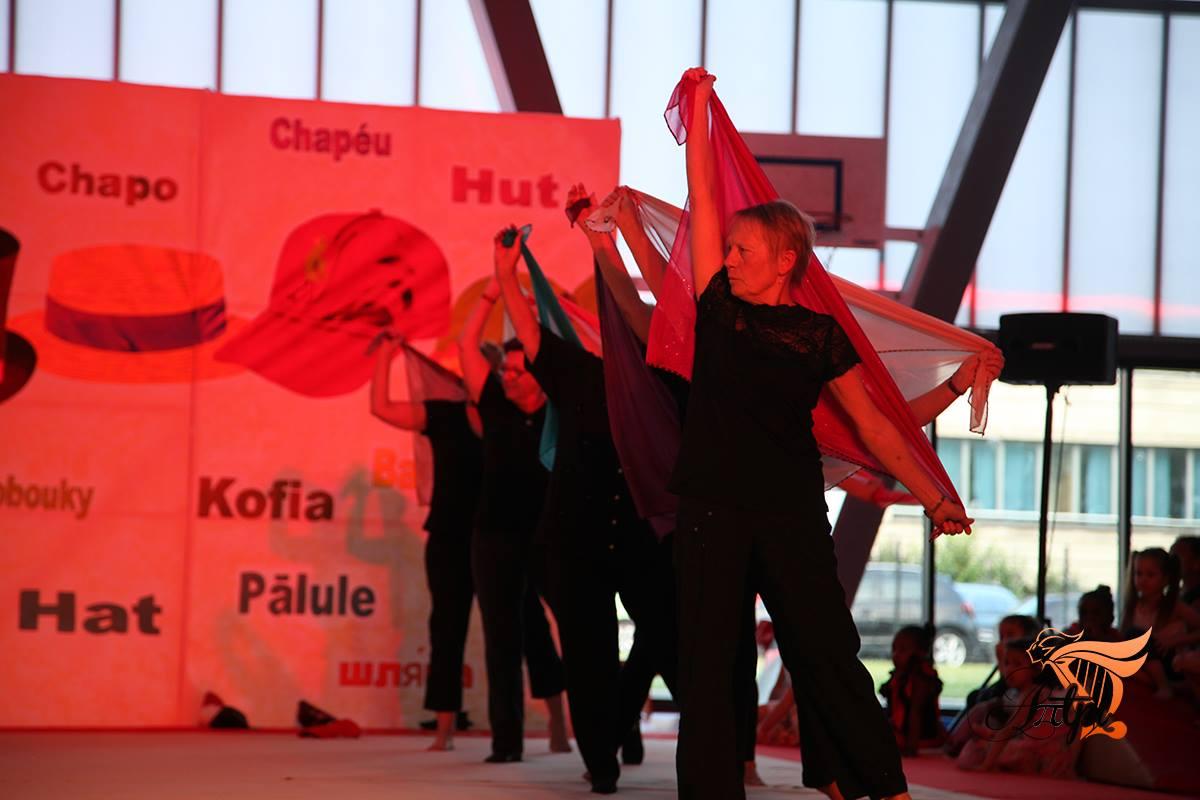 Artpi - Gala 2016 - Etoile Goussainvilloise